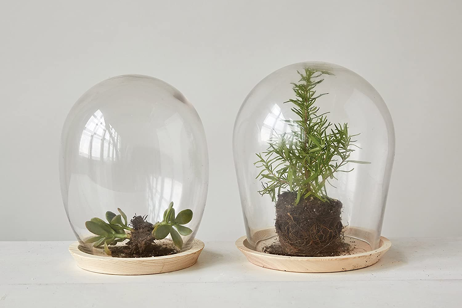 Bubble cloche for French country, French farmhouse, and European country style interiors and decorating.