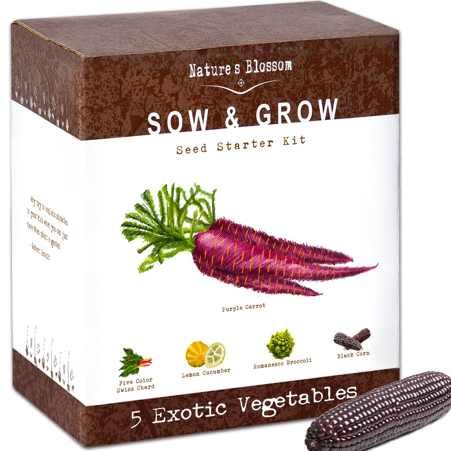Exotic Vegetables Growing Kit - 5 Unique Plants to Grow From Seed: Purple Carrots, Blue Corn, Yellow Cucumber, Rainbow Chard & Broccoli. Garden Gift for Children - Fun Gardening Set For Boys & Girls by Nature's Blossom