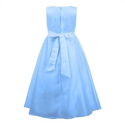 Katara niña de las flores, vestido de noche para niños de 2-3 años, color azul: Amazon.es: Juguetes y juegos