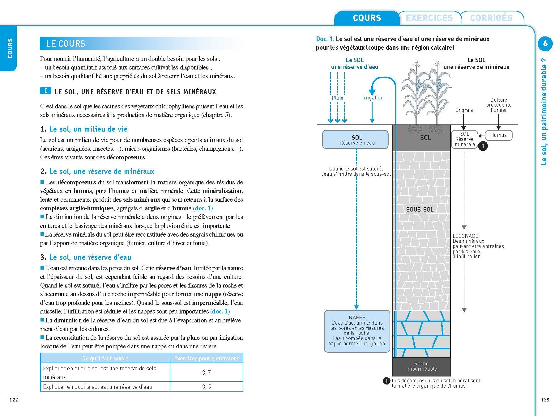 Svt 2de Exercices Resolus Sciences De La Vie Et De La Terre Seconde Amazon Fr Herve Helene Jeannin Nadege Coulais Jean Marc Livres