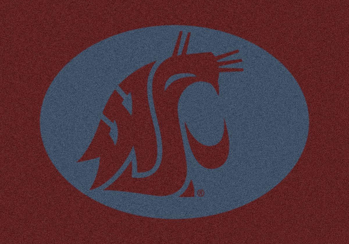 Milliken Washington State College Team Spirit Area Rug by, 2'8'' x 3'10''