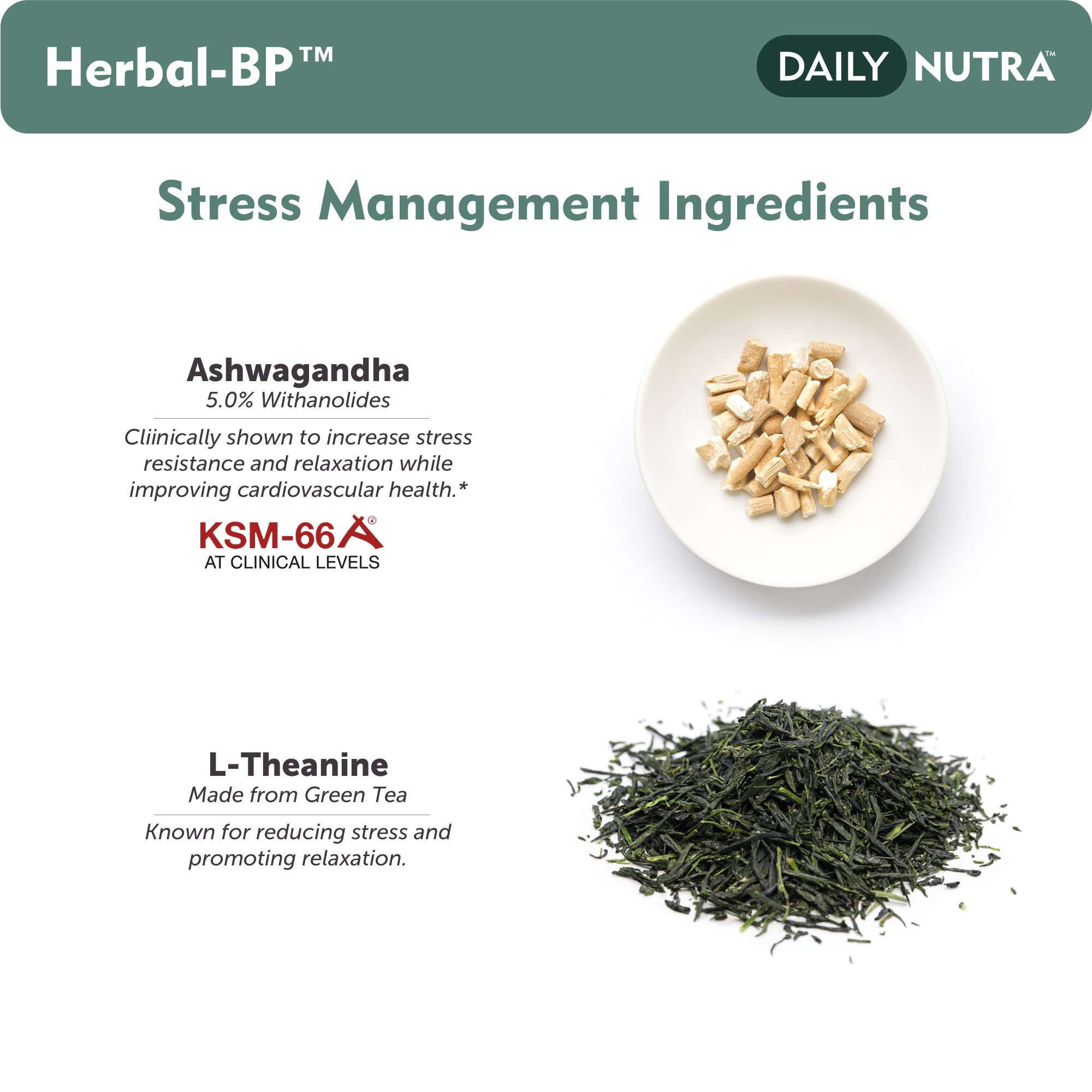 Herbal-BP Natural Blood Pressure Support with Stress Management - Medical Grade Botanical Extracts - Safe, Long-Term Support (3-Pack) by DailyNutra (Image #4)