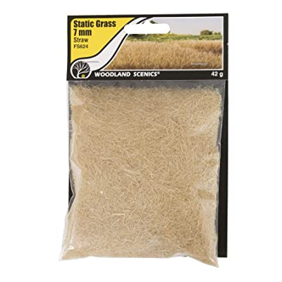 Woodland Scenics FS624 Static Grass, Straw Green 7mm: Toys & Games
