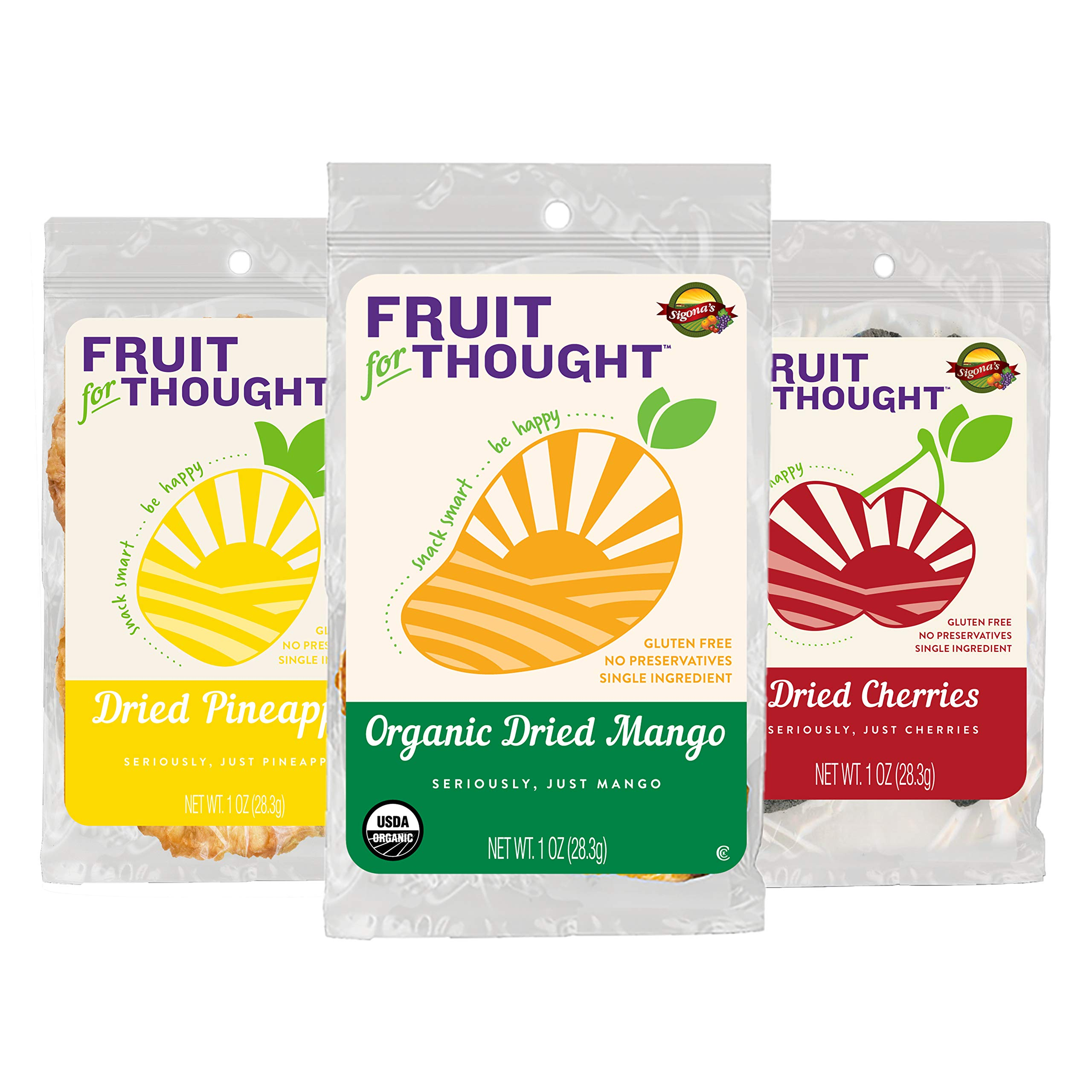 Fruit For Thought Healthy Non-GMO Dried Fruit Snacks Variety Pack, 1 Ounce (12 Pack) by Fruit For Thought