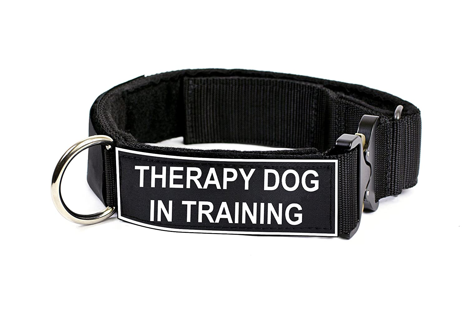 Dean & Tyler 21 to 26-Inch Strong Nylon Cobra Patch Collar with Felt Padding, Therapy Dog in Training Patches, Medium, Black