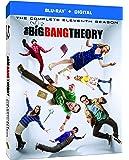 BIG BANG THEORY S11 [Blu-ray] [2018]