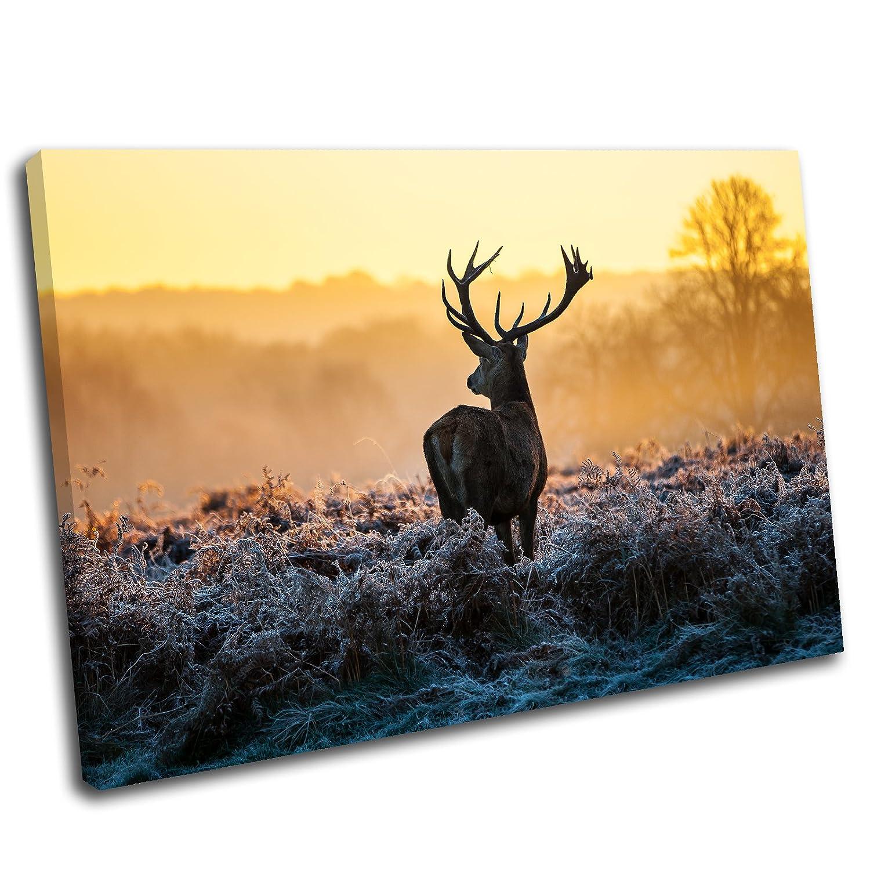 Amazon.com: Canvas Culture - Stag Deer Landscape Canvas Art Print ...