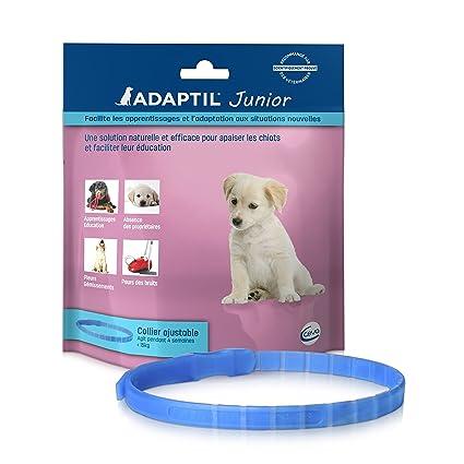 CEVA Adaptil Junior - Collar para Perro. 46,5 cm