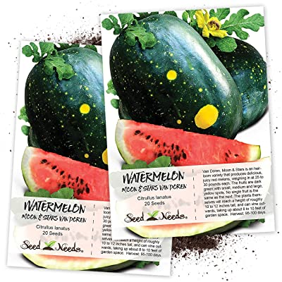 Seed Needs, Van Doren Moon & Stars Watermelon (Citrullus lanatus) Twin Pack of 20 Seeds Each Non-GMO : Watermelon Plants : Garden & Outdoor