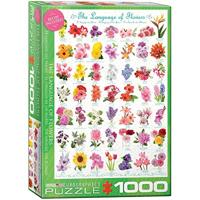 EuroGraphics The Language of Flowers Puzzle (1000-Piece): Toys & Games