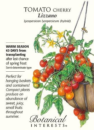 Lizzano Cherry Tomato   10 Seeds   Botanical Interests