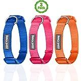 Dog Collar, Set of 3, Classic, Solid, Nylon Dog Collar, Colors: Orange, Blue, Red By Bemix Pets