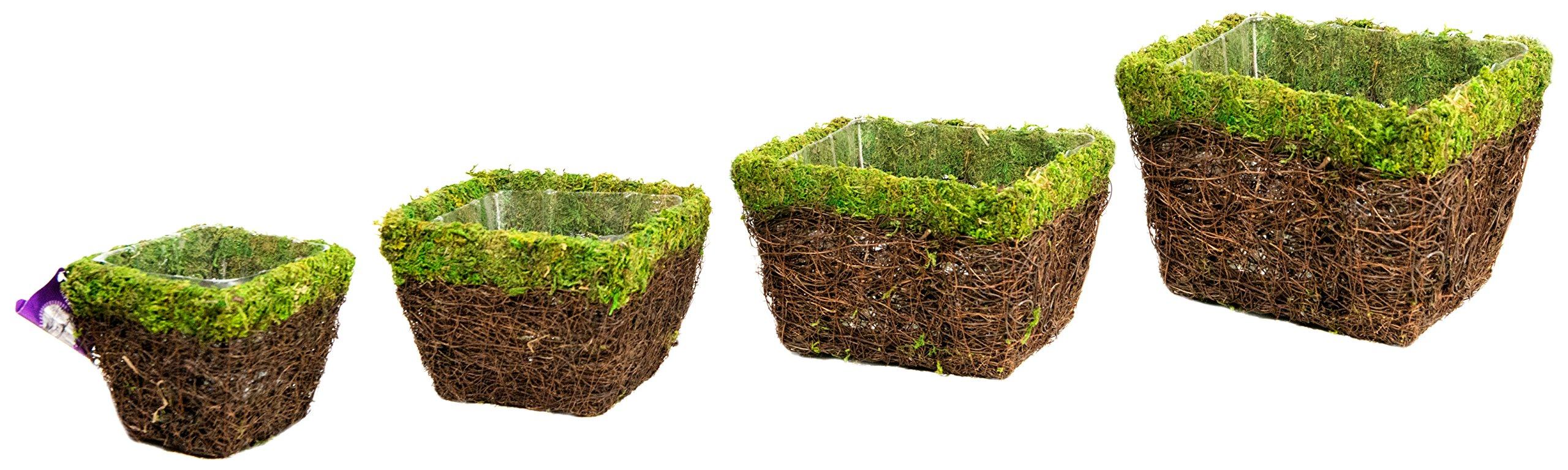 Super Moss (55070) Ventura, Fresh Green, Set of 4 (S/M/L/XL)