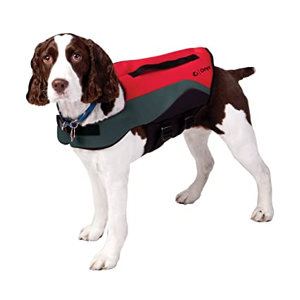 37c61a5dd55f5 Amazon.com : Absolute Outdoor Onyx Neoprene Pet Vest : Life Jackets ...