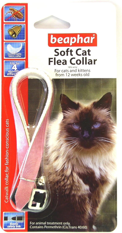 Beaphar Cat Flea Collar Catwalk Collection Pink Valentina Valentti Uk Amazon Co Uk Pet Supplies