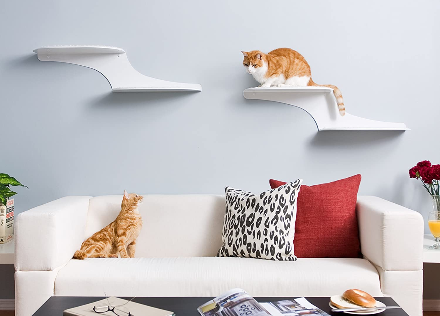 Amazon the refined feline cat cloud cat shelves in white amazon the refined feline cat cloud cat shelves in white left facing cat beds pet supplies amipublicfo Image collections