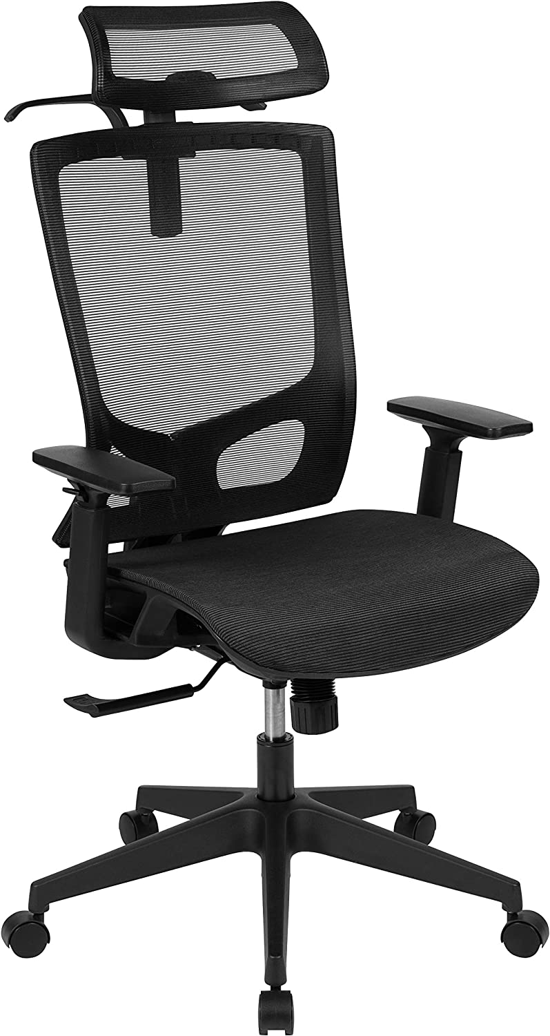 Flash Furniture Ergonomic Mesh Office Chair with Synchro-Tilt, Pivot Adjustable Headrest, Lumbar Support, Coat Hanger and Adjustable Arms in Black