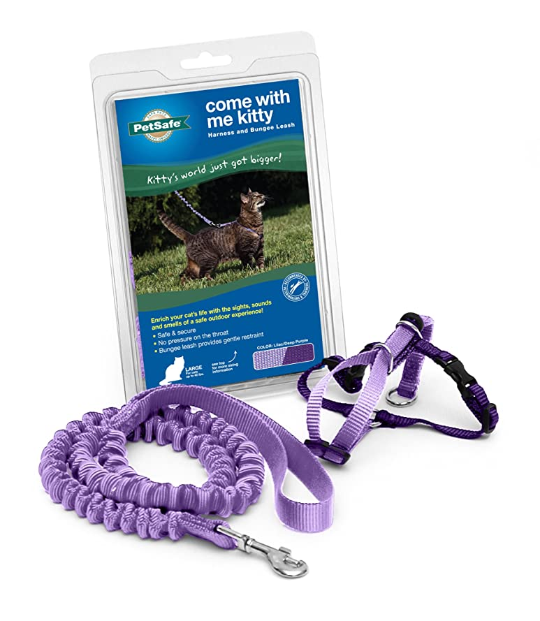 数値警告ヘアPUPTECK ハーネス 猫用 犬 ハーネス 小型犬 ハーネス リード セット 犬用 リード 胸あて式 メッシュ素材 散歩 ブラック M