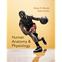Human Anatomy & Physiology (2-downloads) (Marieb, Human Anatomy & Physiology)