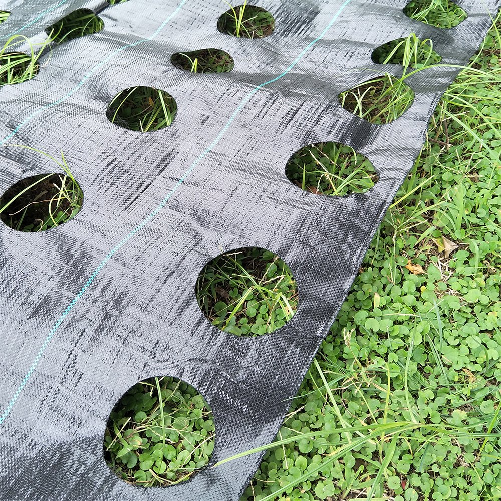 Originline 4x12ft Weed Control Fabric with Ready Made Planting Holes - Ground Cover Weed Barrier - Eco-Friendly for Vegetable Garden Landscape(Dia 4'',3 Row)