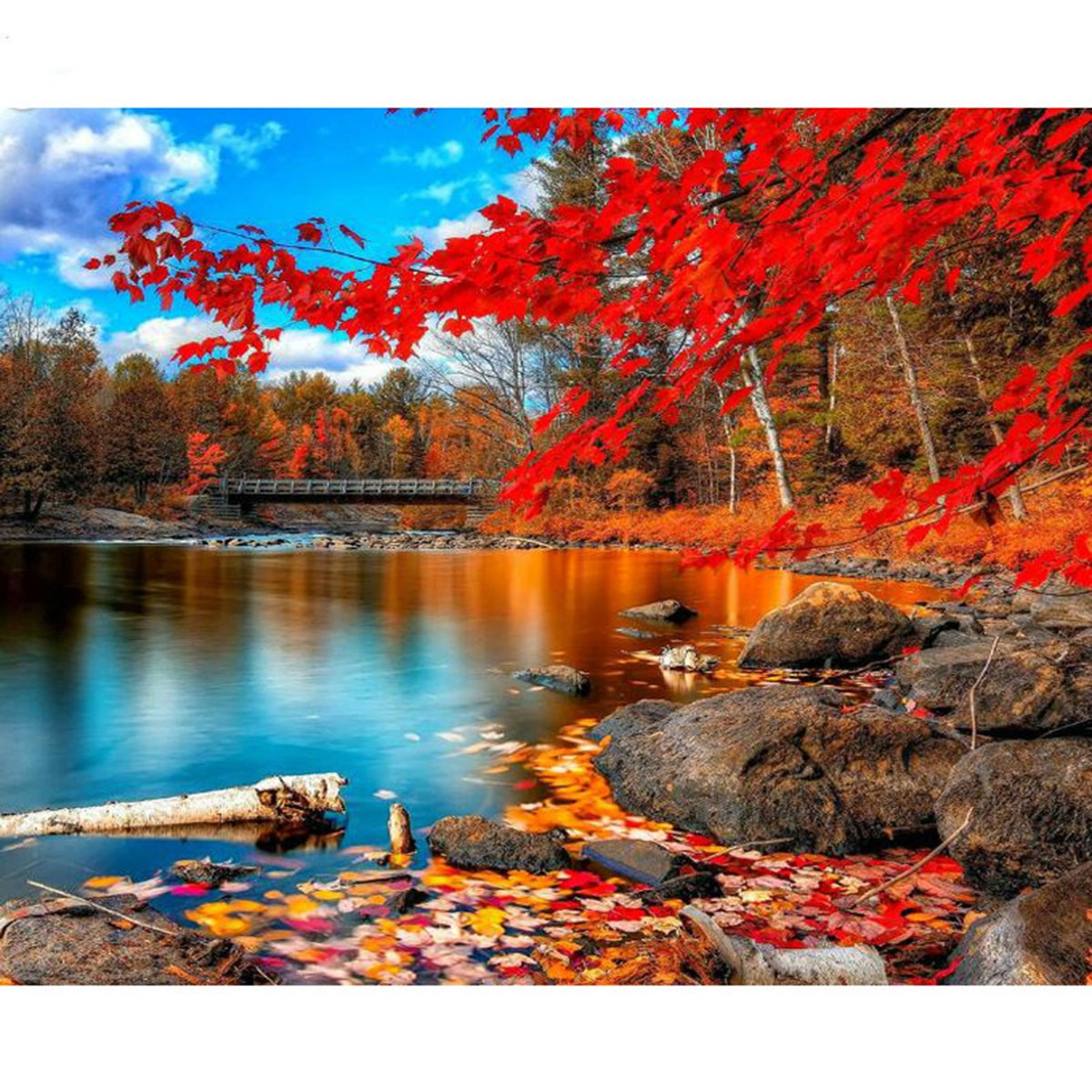 Shukqueen Diy Oil Painting, Adult's Paint by Number Kits, Acrylic Painting Autumn Lake 16X20 Inch (Framed Canvas)