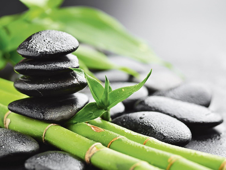 Artland Qualitätsbilder Qualitätsbilder Qualitätsbilder I Glasbilder Deko Glas Bilder 125 x 50 cm Wellness Zen Stein Foto Grün D8QF Wachstum - Lavasteine Bambus af4708