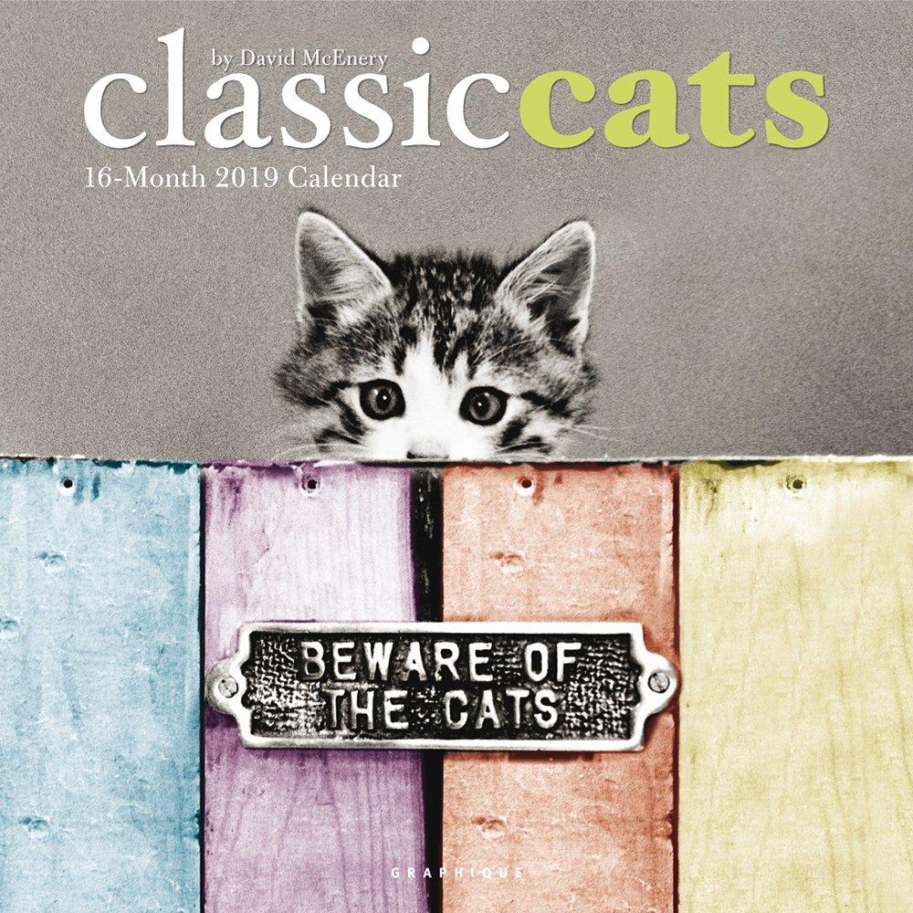 Graphique Classic Cats Wall Calendar (CY0719)