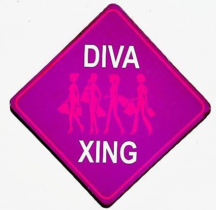 Amazoncom Diva Xing Fun College Door Signs Humourous Plaque Home