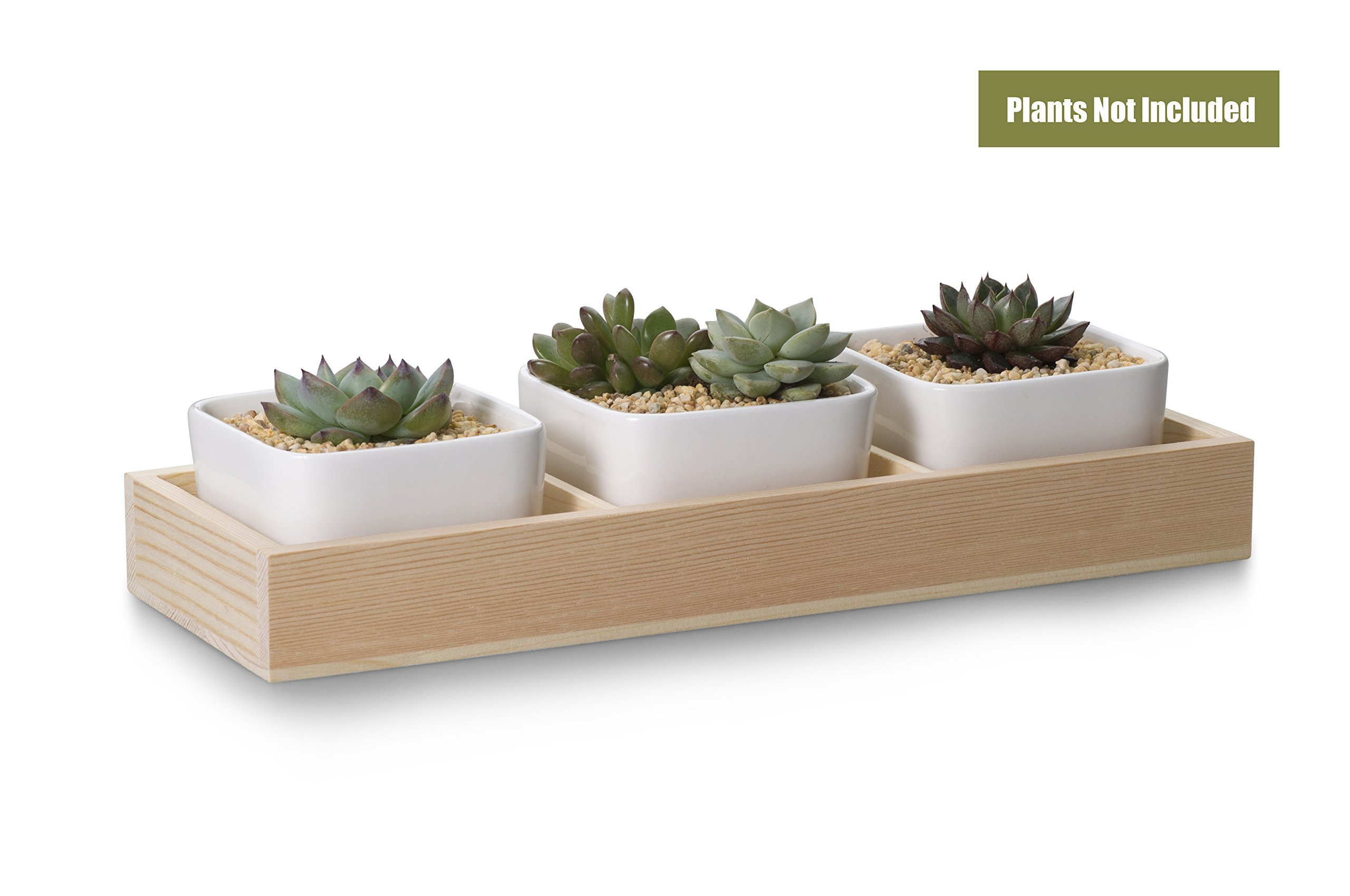 Opps 3 Pcs 3.54 Inch White Ceramic Square Succulent/Cactus Plant Pot with Decorative Window Wooden Plant Container Box Tray