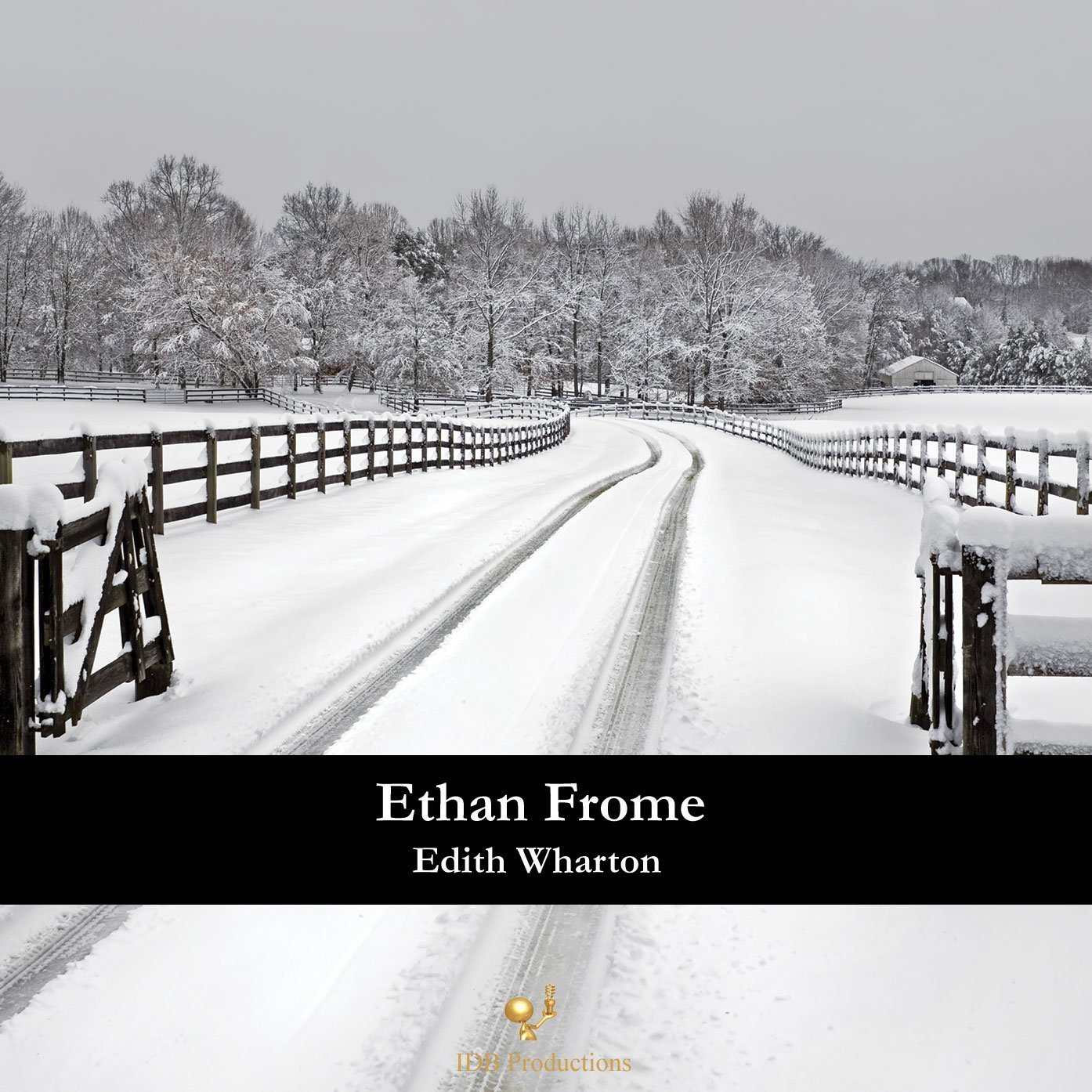 fantasy portrayed in edith whartons book ethan frome The character ethan, portrayed in edith whartons feminism is a key role in the book ethan frome by edith codependency in edith wharton's ethan frome.