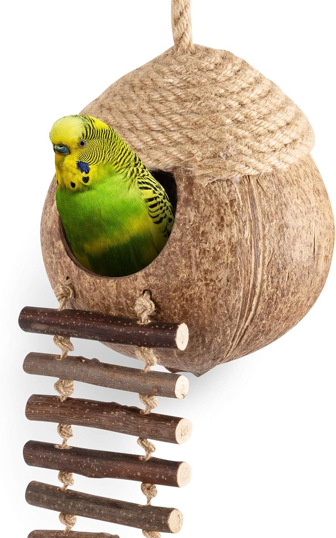 Andwe - Cabaña para pájaros de coco con escalera para loros, periquitos, cacatúas, animales pequeños, jaula de mascotas, decoración: Amazon.es: Productos para mascotas