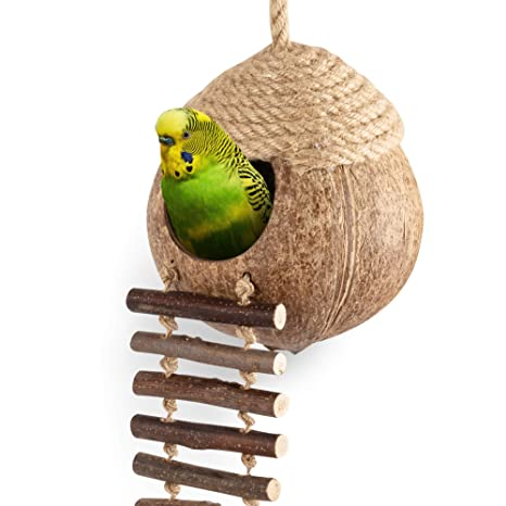 andwe - Cabaña para pájaros de Coco con Escalera para Loros ...
