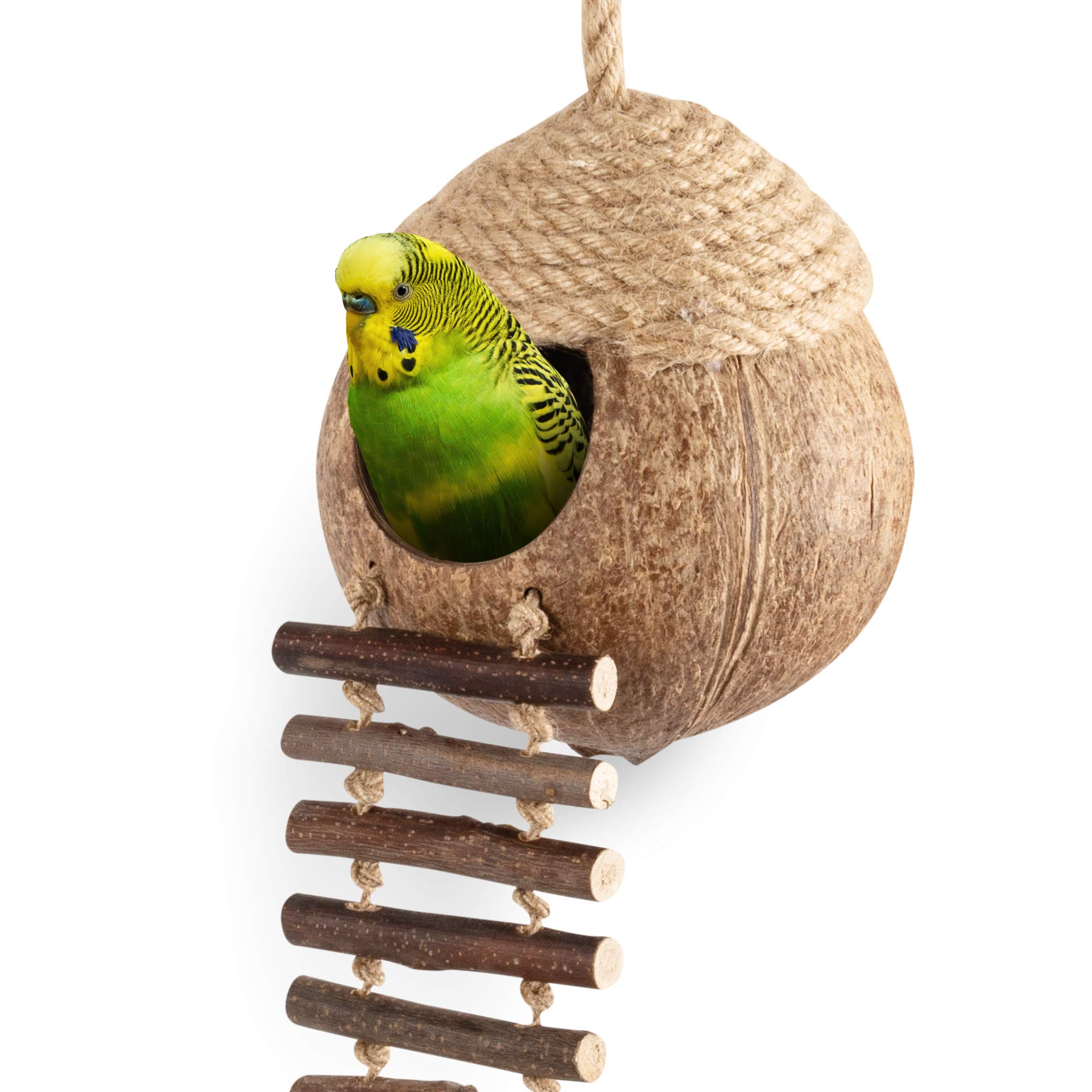 andwe Coconut Bird Nest Hut with Ladder for Parrots Parakeet Conures Cockatiel – Small Animals House Pet Cage Habitats…