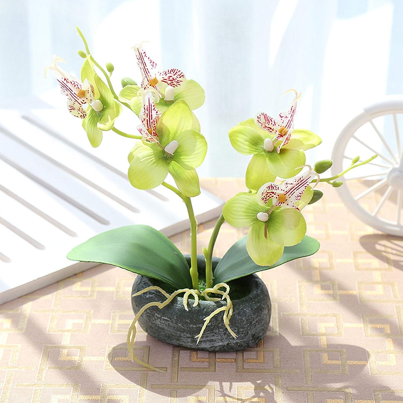 Flikool 2 Tallos Orqu/ídeas Artificiales de Seda con Jarr/ón Bonsai de Phalaenopsis Mariposa Flores Artificial en Maceta Plantas Artificiales para Balc/ón Hogar Oficina Mesa Decoraci/ón Pink