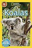 National Geographic Readers: Koalas