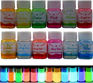 Glow in the darkpigment powder,12 Colors Resin Dye Luminous Powder for Epoxy Resin,Acrylic Paint,Slime,Nails,Halloween Party, Fine Art & DIY Crafts,Non-Toxic,Skin Safe, Long Lasting(0.7oz/Bottle)
