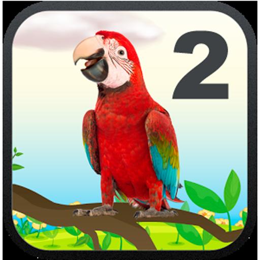 Talking Parrot 2 (Talking Basketball)