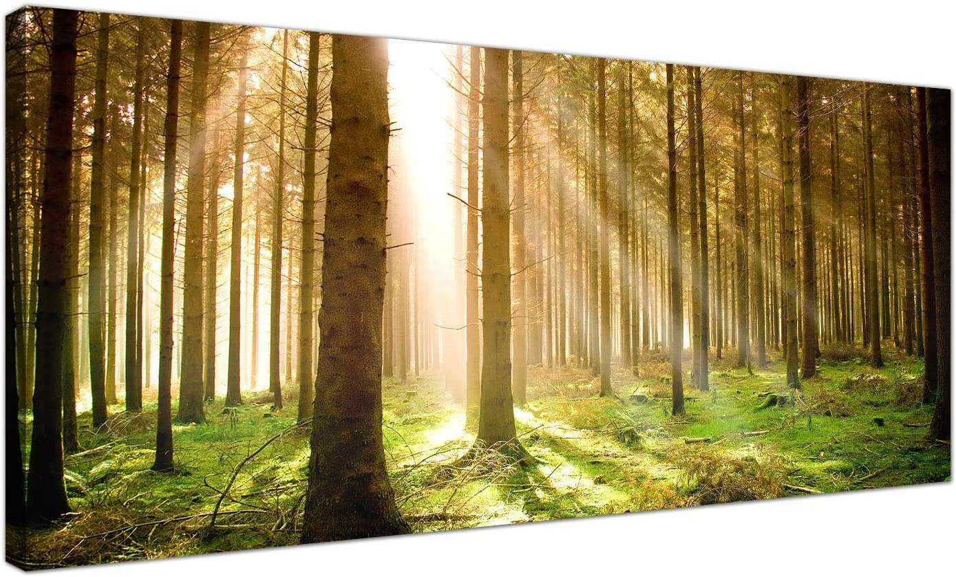 Modern Canvas Prints of Forest Trees for your Dining Room - Large Landscape Wall Art - 1042 - Wallfillers® by Wallfillers