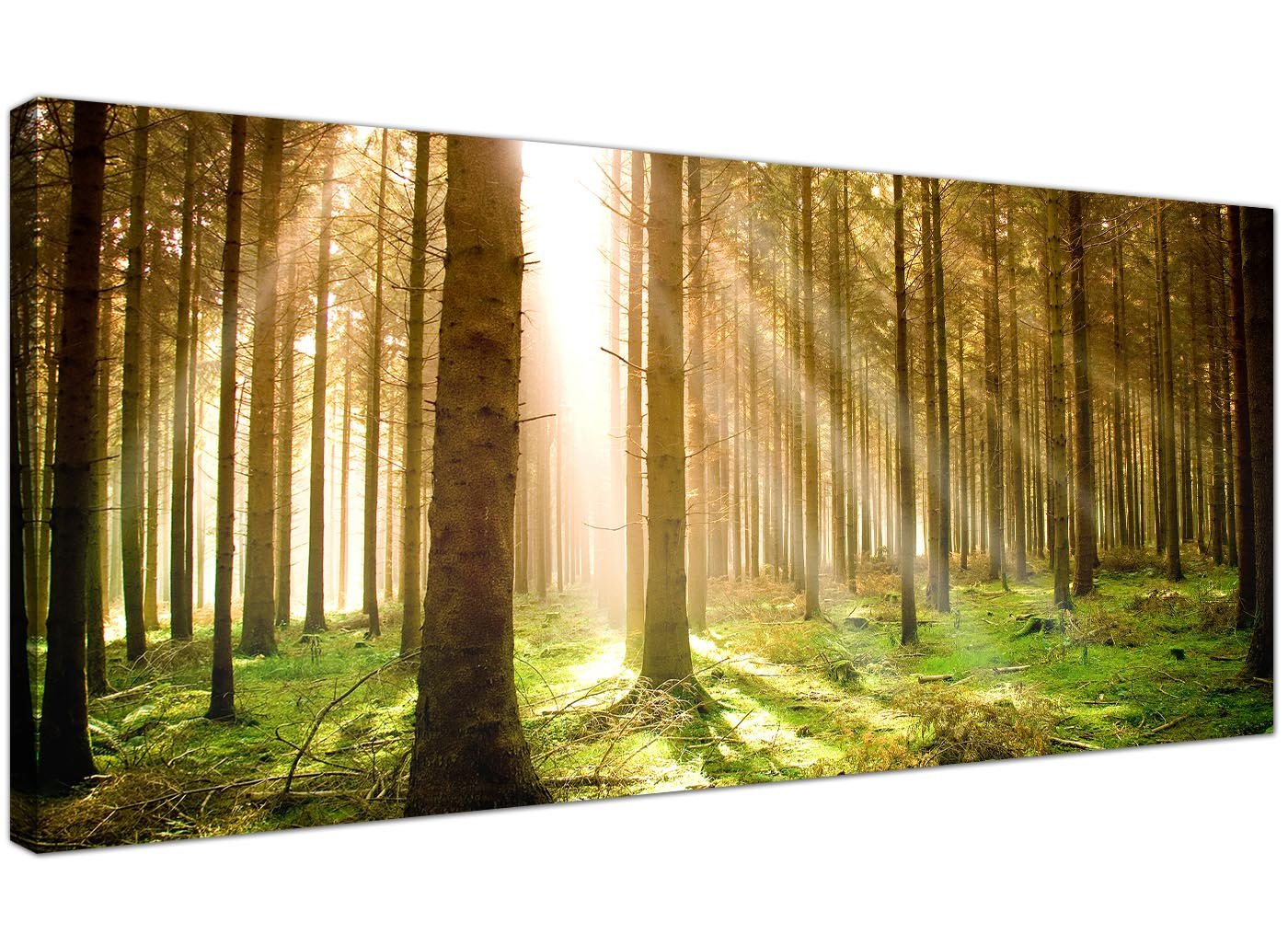 Set of 3 Green Canvas Art Wall Pictures Trees Landscape Print 3042 ...
