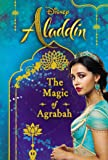 Disney Aladdin: The Magic of Agrabah (Replica Journal)
