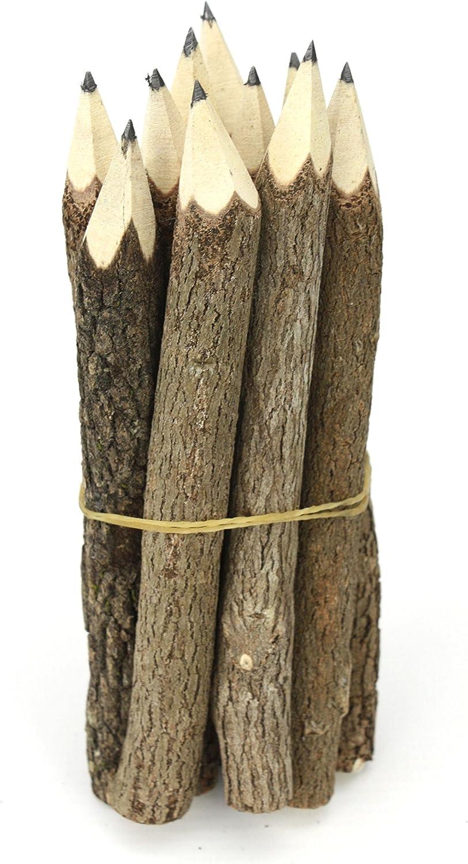 Multipack su 5 Bundles Thai Albero Ramo Ramoscello Pencil Bundle Small Size Solo nero