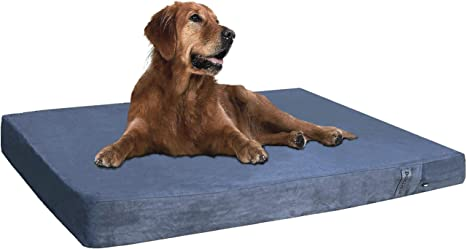 Dog Beds Memory Foam Off Cut Used All Dog Sizes
