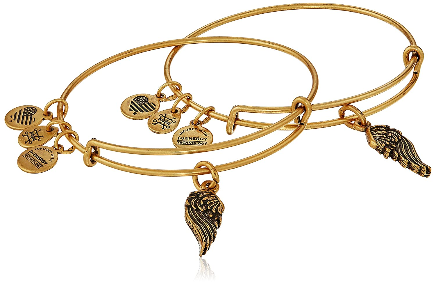 Alex and AniPath of Symbols Wings Set of 2 Expandable Wire Bangle Charm Bracelet A16EB64RG