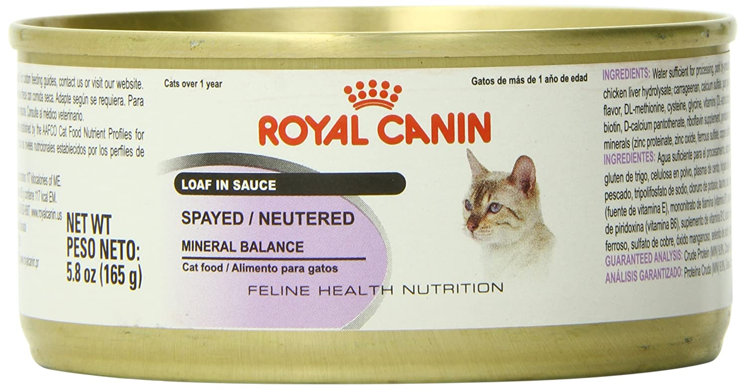 Amazon.com : Royal Canin Feline Health Nutrition Spayed/Neutered Loaf in Sauce Canned Cat Food (24 Pack), 5.8 oz/One Size : Pet Supplies