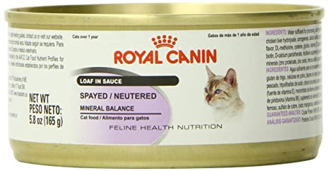 Royal Canin Feline Health Nutrition Spayed/Neutered Loaf in Sauce Canned Cat Food (24