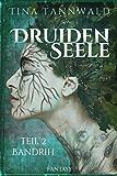 Druidenseele: Teil 2: Bandrih
