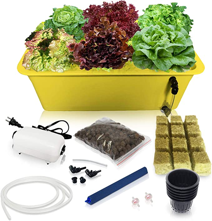 SavvyGrow DWC Hydroponic System - Best Complete Kit with Essential Tools