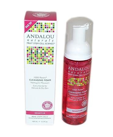 2 Pack - Andalou Naturals 1000 Roses Cleansing Foam, Sensitive 5.50 oz Bicheop Ja Saeng Essence