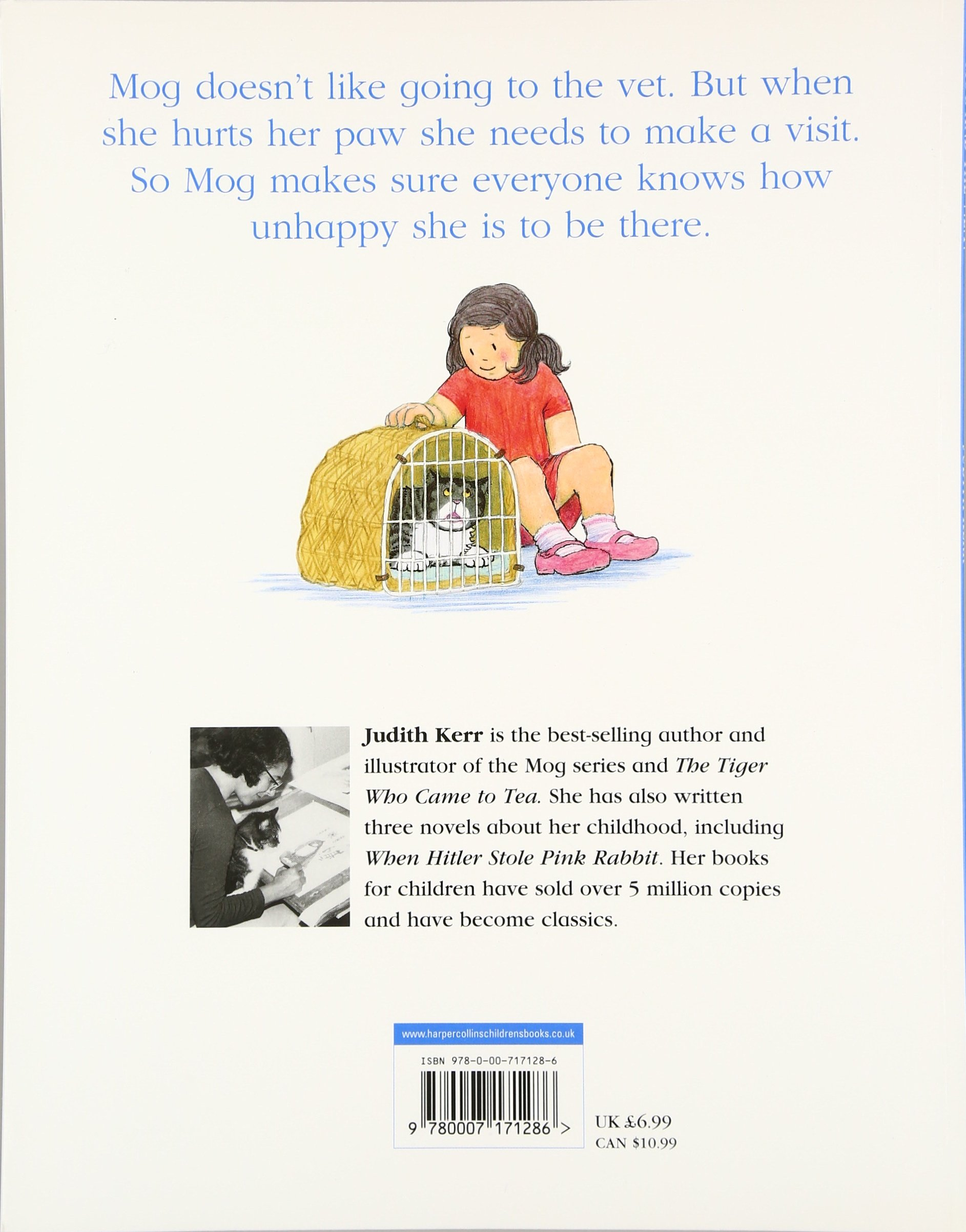 Mog and the V E T  (Mog the Cat Books): Amazon co uk: Judith