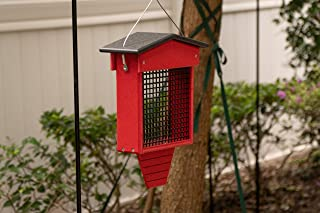 product image for DutchCrafters Hanging 2 lbs Suet Bird Feeder with Tail Prop Made in America (Red & Black)